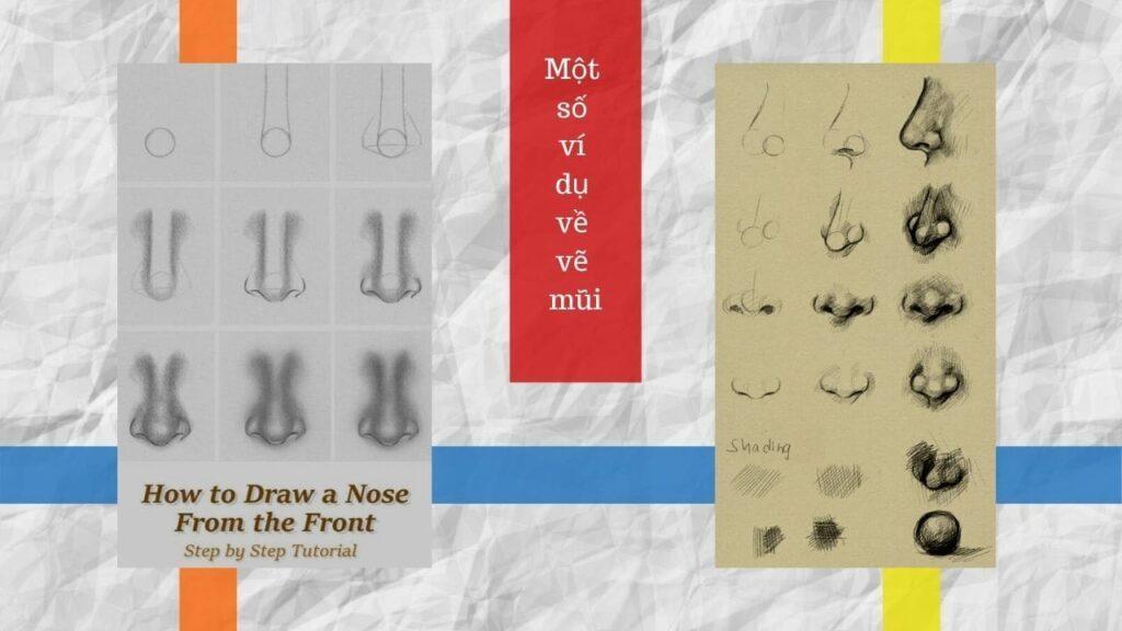 Các bước vẽ mũi