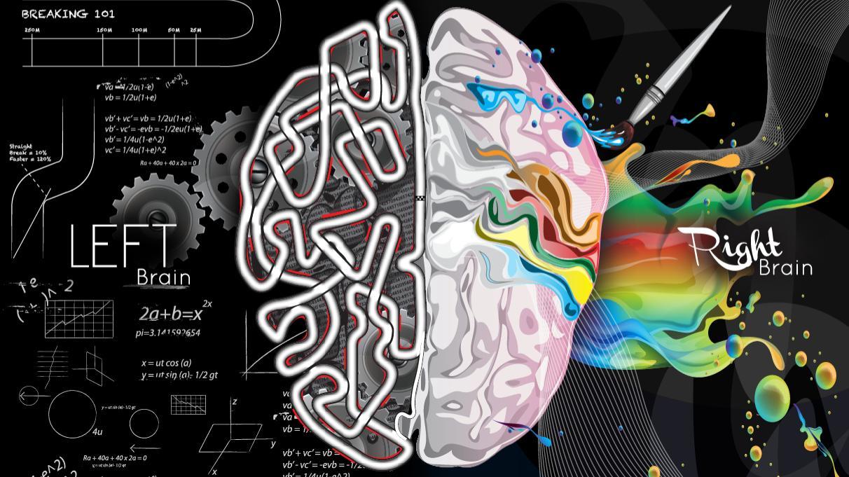 dạy trẻ học bằng 2 bán cầu não