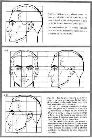 Phương pháp vẽ người cơ bản 2