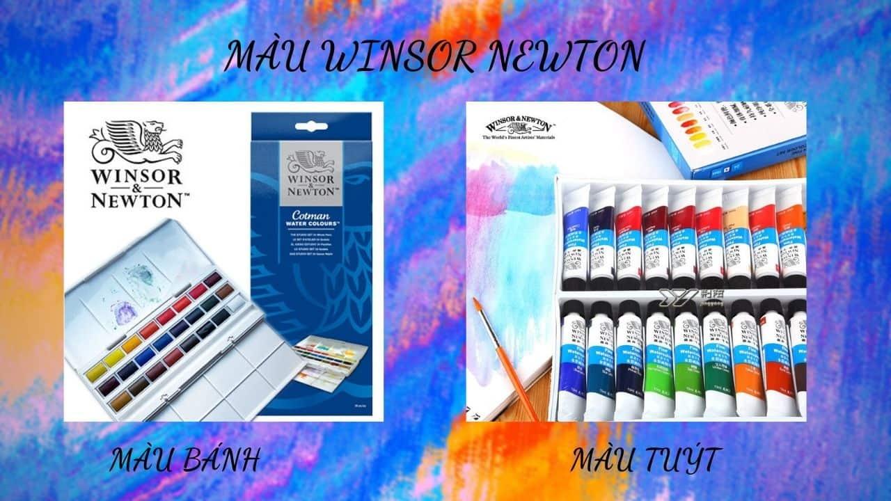 Màu Winsor Newton