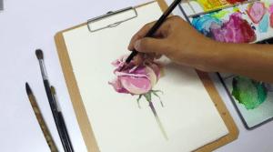 1 4 300x167 - Mách bạn một số kỹ thuật vẽ hoa hồng bằng màu nước