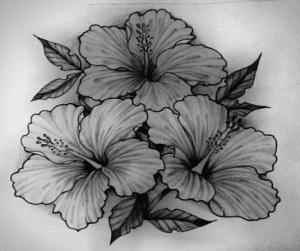 tranh vẽ trắng đen bằng bút chì