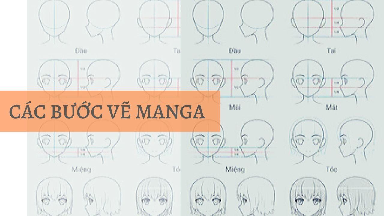 Các bước vẽ manga (Nguồn Pinterest)