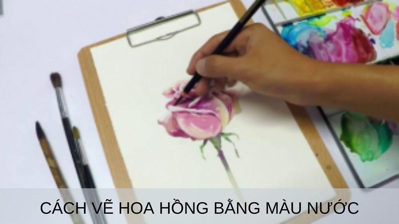 vẽ hoa hồng bằng màu nước